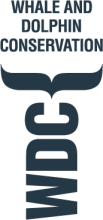 WDC_Logo_V_D_RGB